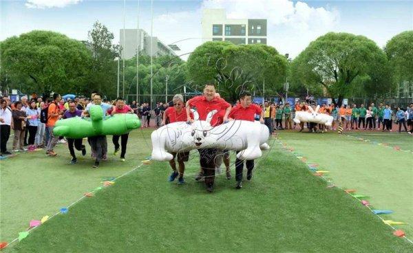 为什么大家喜欢必威体育网站龟兔赛跑这类趣味运动产品